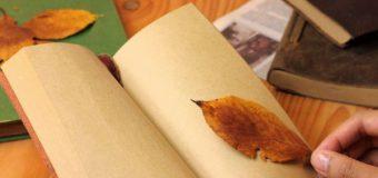 「読書の秋」大切な人へ本を贈りませんか?